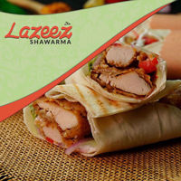 """Picture of 8"""" Shish Tawook Wrap"""